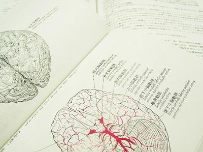脳の疲れ2